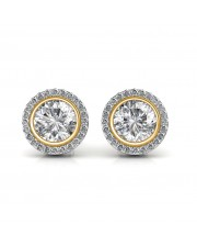 The Elegant Circ Earrings